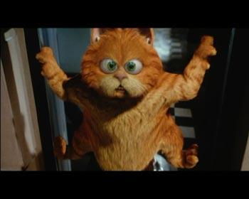 Garfield en personne film dvd dvdcritiques - Voix de garfield ...